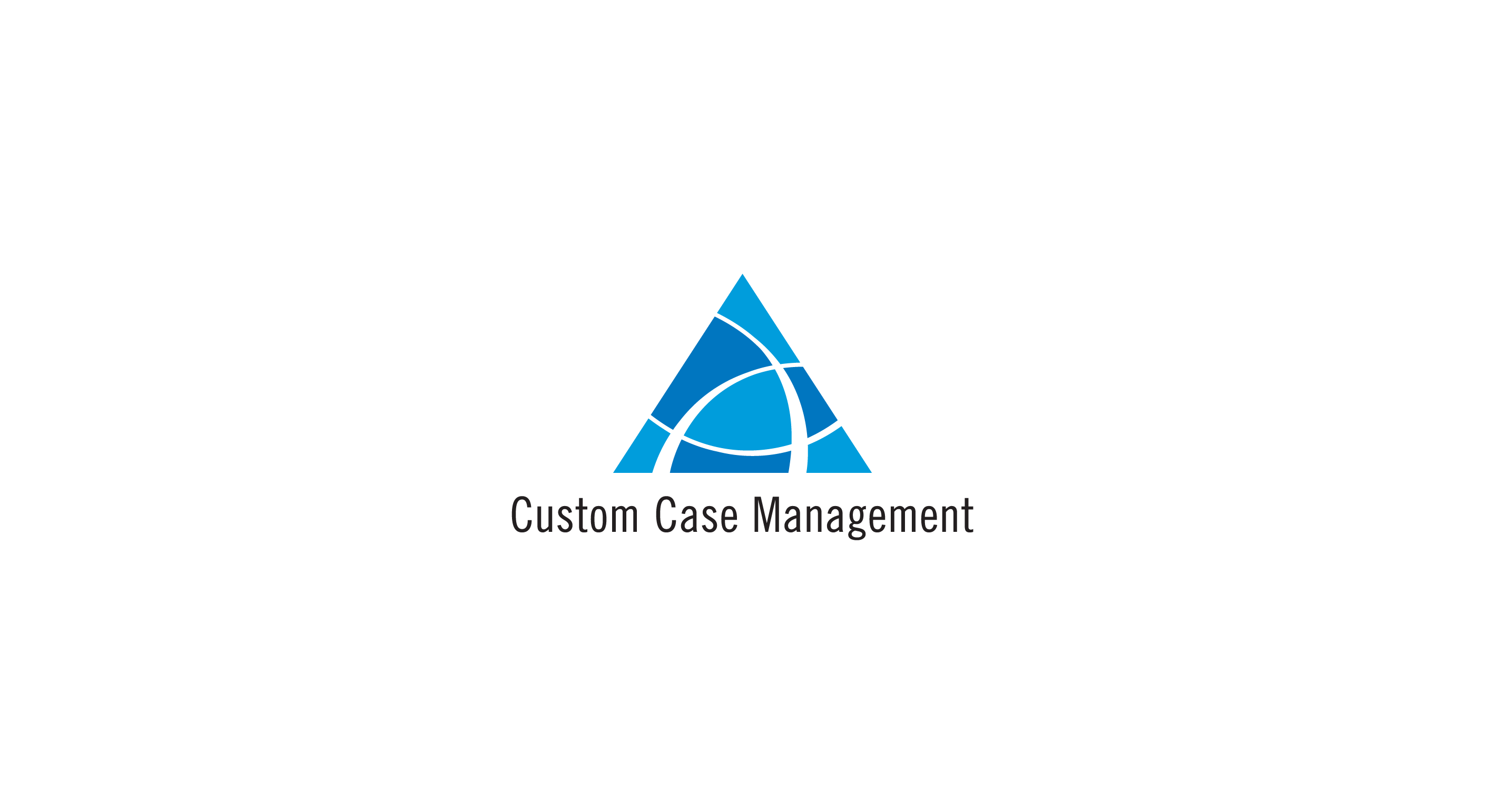 Custom Case Management